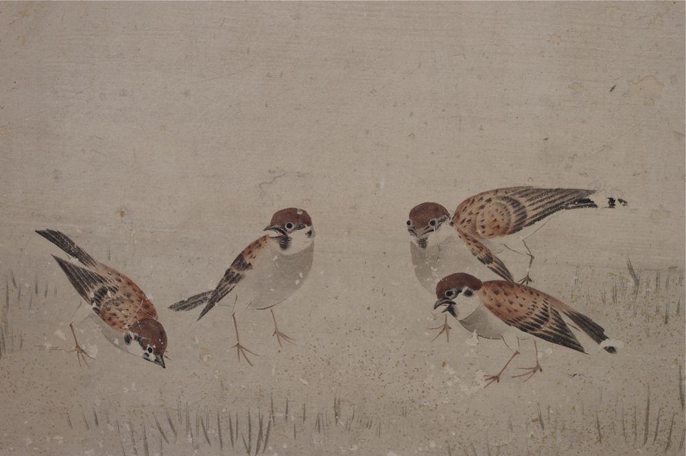 KYO SCN185