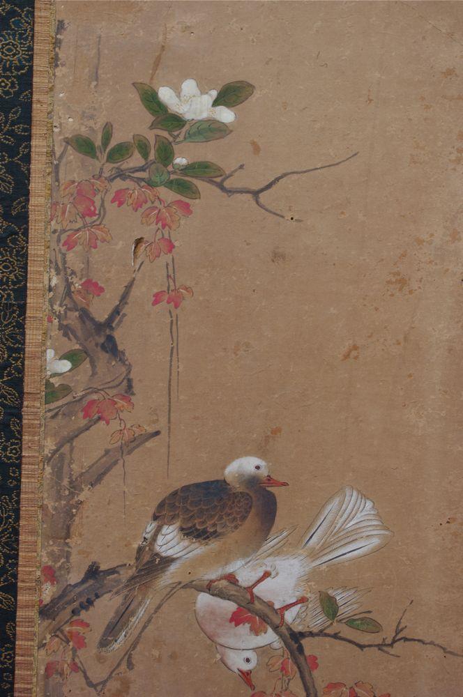 KYO SCN186